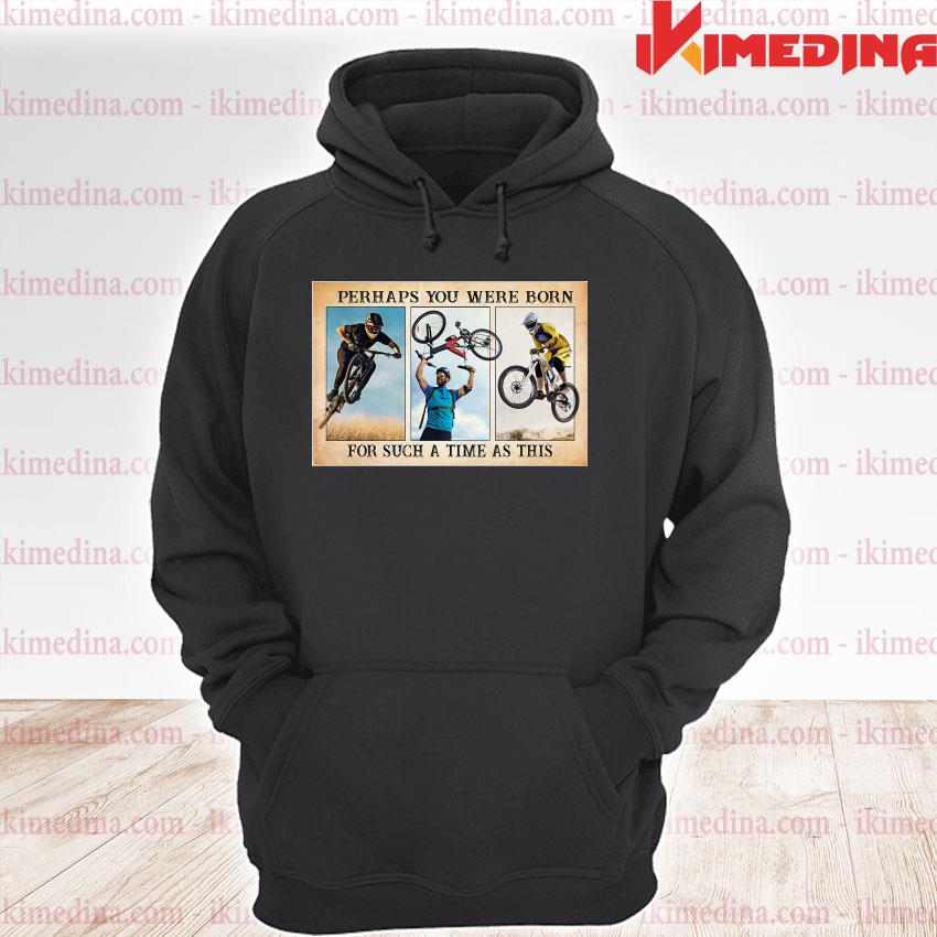 Official perhaps you were born for such a time as this s premium hoodie